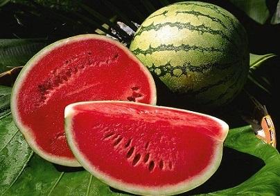 Watermelon-Sliced-Eqyptian5
